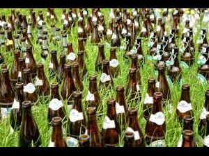 Piège à bière limaces