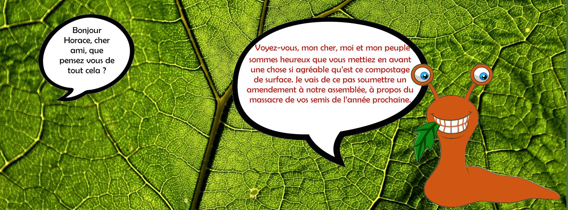 le compostage de limace et les limaces en permaculture