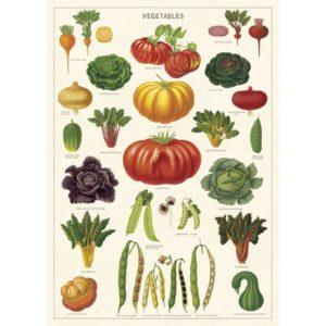 légumes résistants aux limaces