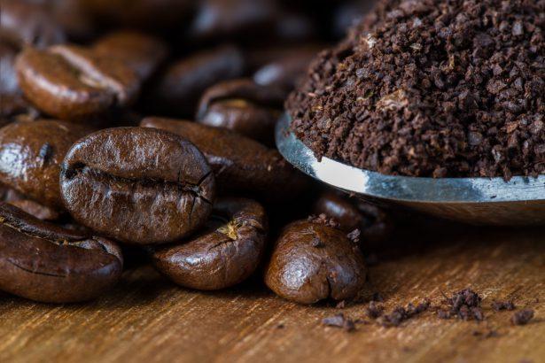 marc de café au pied des plantes