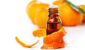 huile essentielle d'agrumes répulsif pour les chats remede de grand mere