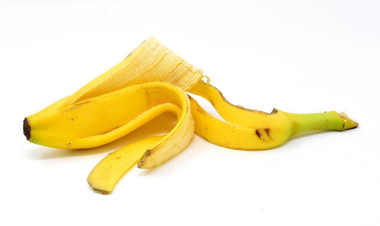 peau de banane comme engrais pour le jardin
