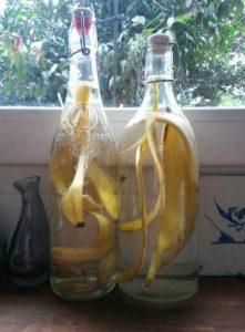 l'engrais liquide à base de peau de banane