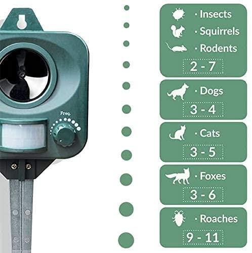 les appareil à ultrasons repulsif pour chats sont dangereux pour la biodiversité