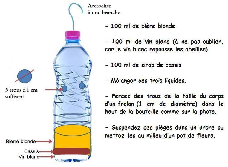 piege à frelons asiatiques en bouteille plastique
