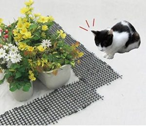 un tapis à picots anti-chat