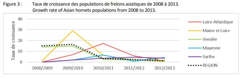 taux de croissance des frelons asiatiques en France