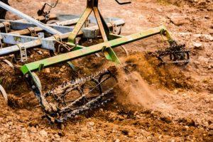 labourer le sol tue les carabes