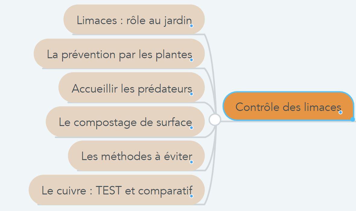 comment gérer les limaces en permaculture ?