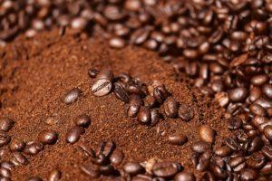 le marc de café contre les fourmis : est-ce efficace ?