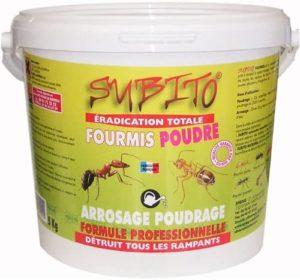 éradication totale fourmis