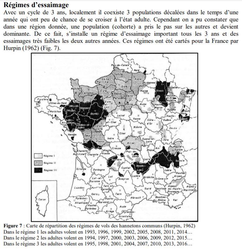 carte des grands vols de hannetons par période